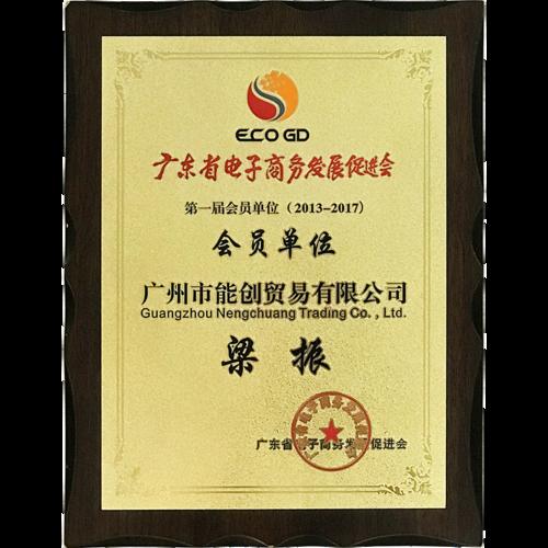 广东省电子商务发展促进会会员单位